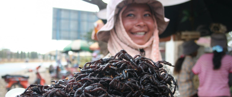 Déguster des insectes au Cambodge