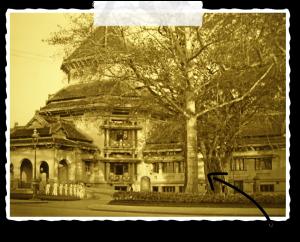 Le musée national d'Histoire du Vietnam
