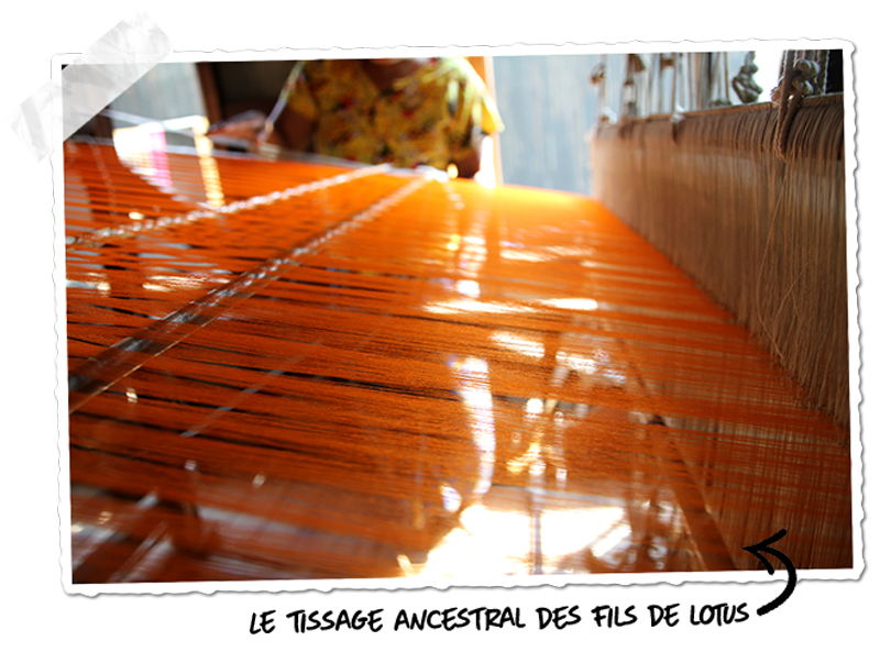 Le tissage, étape cruciale de la production d'étoffes en lotus