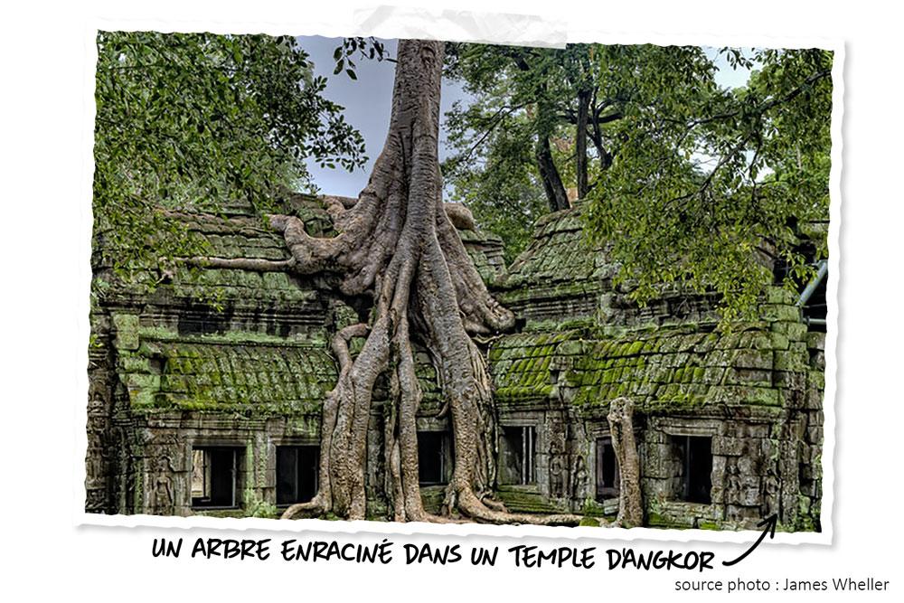 Voyage de noces : Cambodge, Angkor