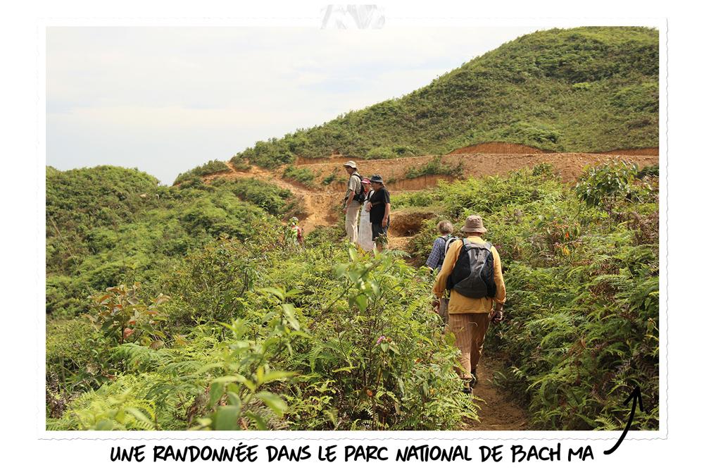 La nature au Vietnam : le parc national de Bach Ma