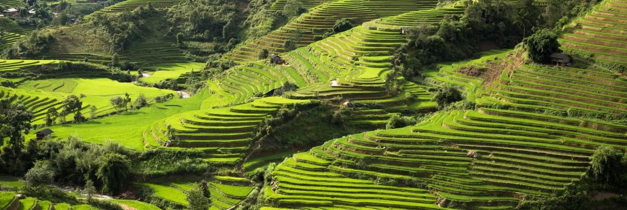 Les rizières du nord du Vietnam avec le blog 1idee