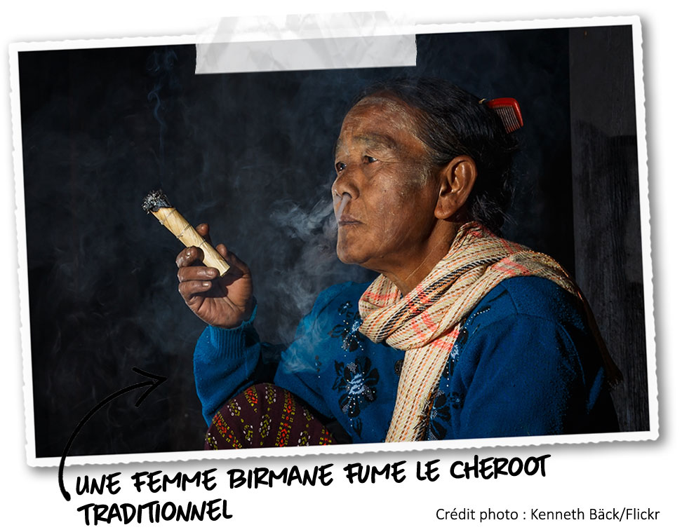 La mujer fumando un gran cigarro birmano