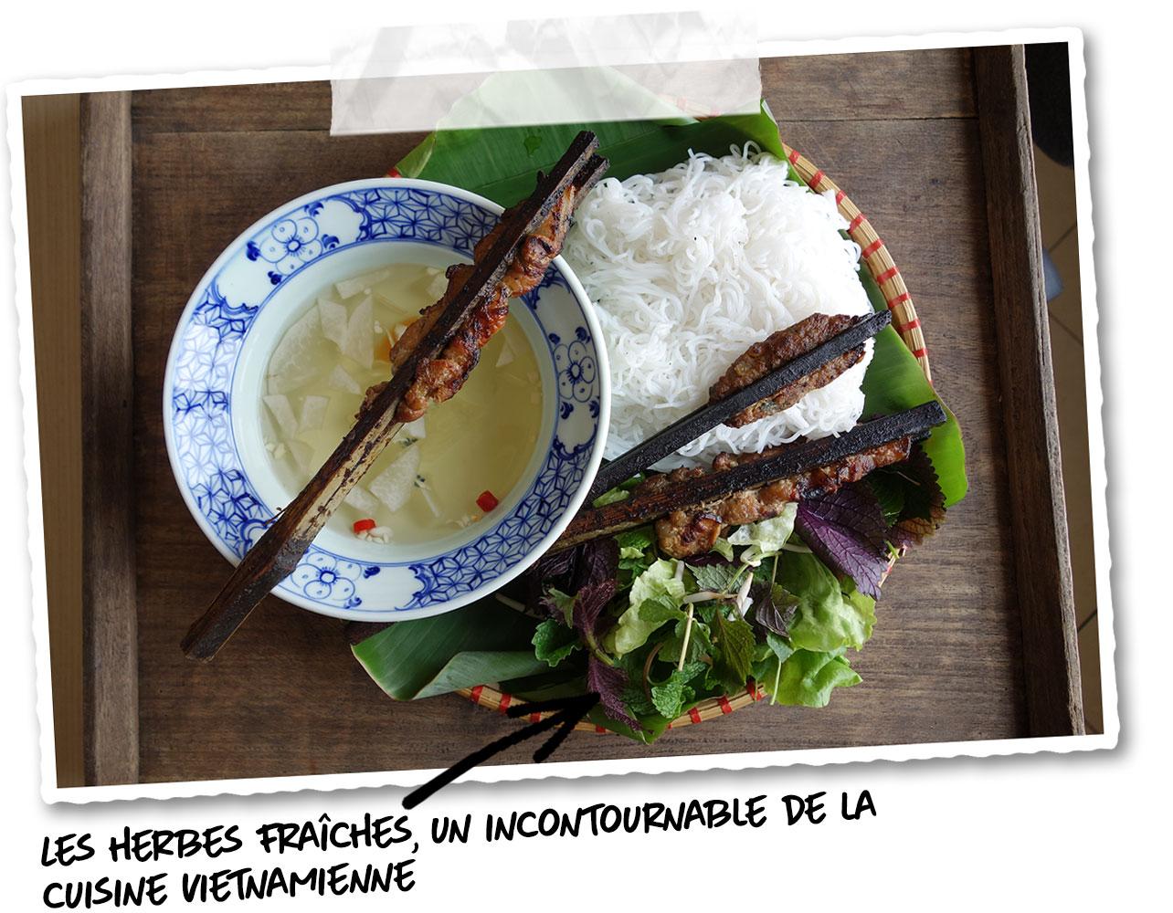 Les herbes aromatiques du Vietnam