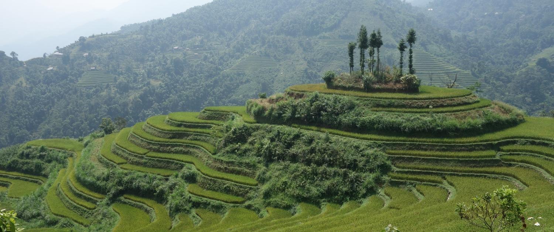 La nature au Vietnam avec Ha Giang