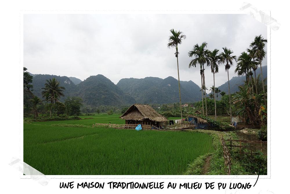Pu Luong reflète merveilleusement la nature du Vietnam