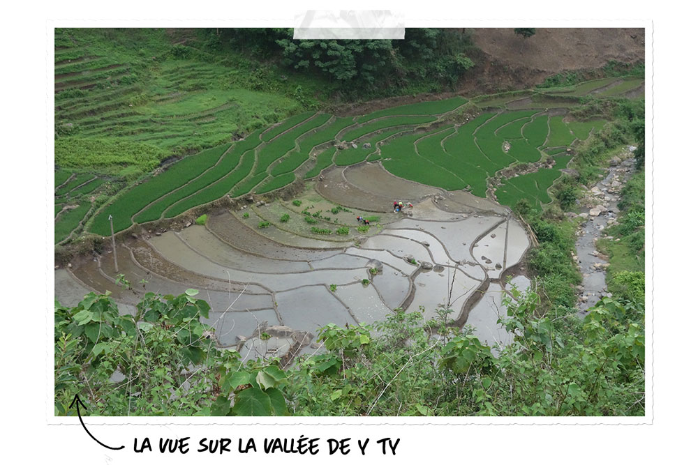 La nature du Vietnam à Y Ty